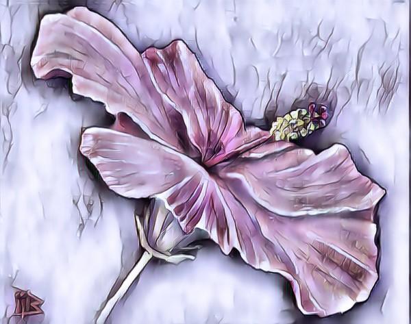 Hebiscus by Biji sylvie faucher