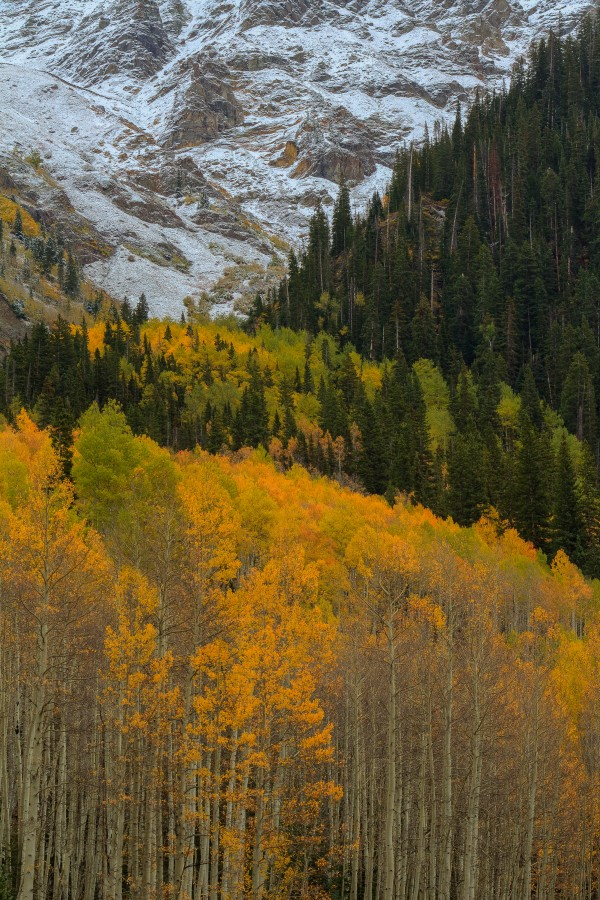 ASPEN  RISE by Bill Sherrell