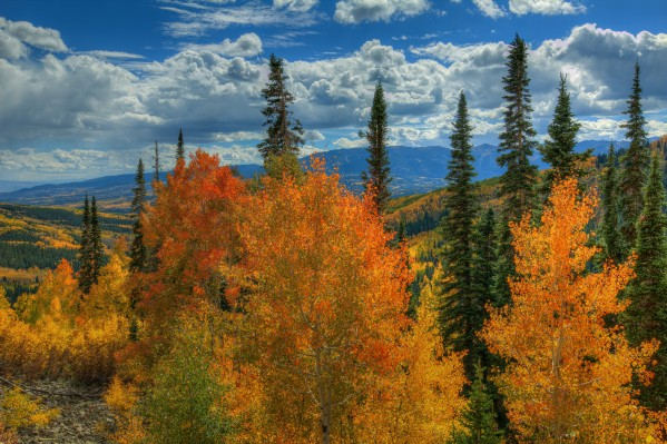 AUTUMN FIRE AT OHIO PASS by Bill Sherrell