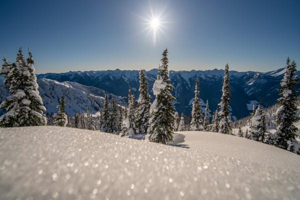 Mid winter blues by Billy Stevens media