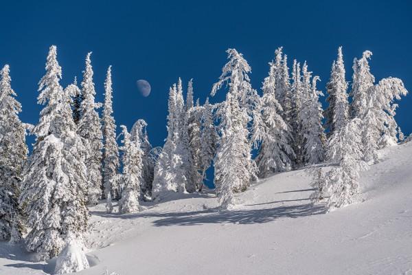 Alpine moon by Billy Stevens media