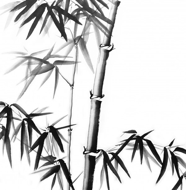 Bamboo - Chinese Style by Birgit Moldenhauer