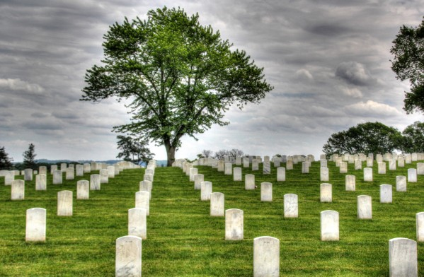 Cemetery Memorial Flags by Bob Vogt