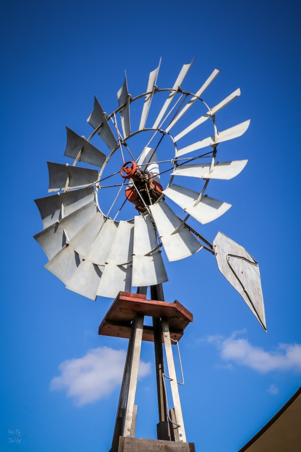California Windmill by Bob Vogt