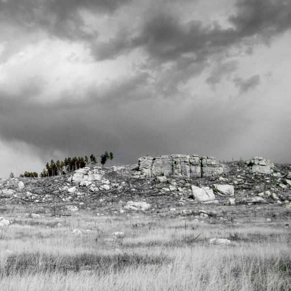 The Sentinels by Brendan McMillan