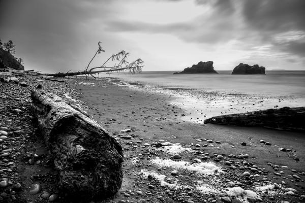Sea Traveler by Brendan McMillan