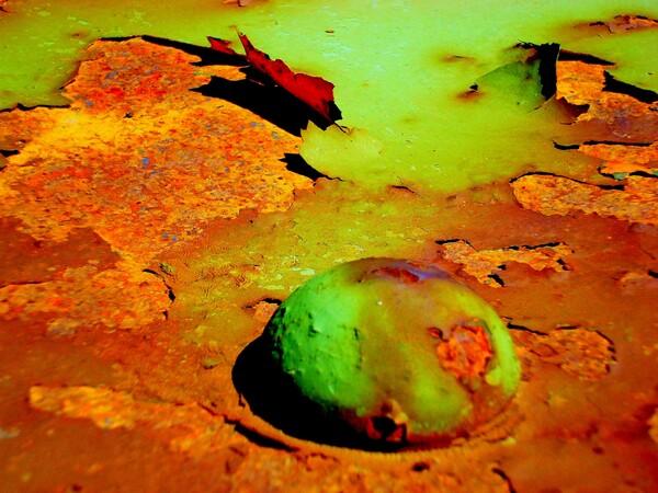 Burnt Sienna by Brett Noel