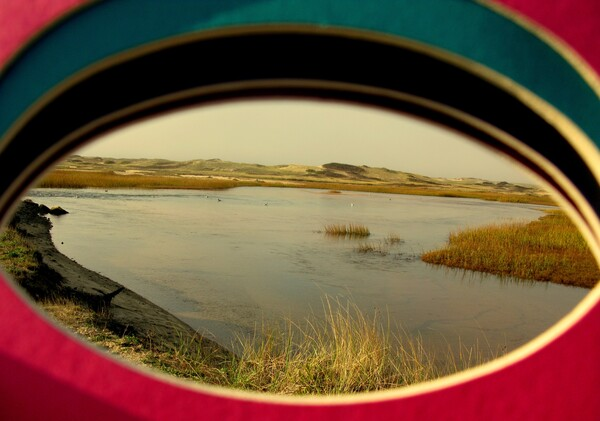 Eyeing the Cape by Brett Noel