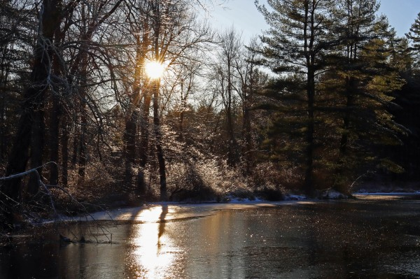Icy Pond by Brian Camilleri Photography