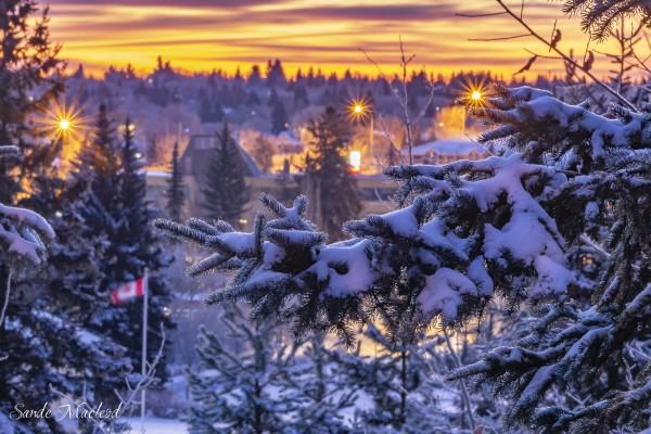 Sunrise_StAlbert_4186 by Brian Macleod