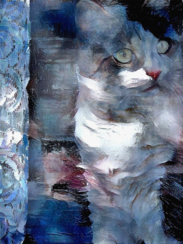 Cat in Pastel Colors by Bruce Rolff