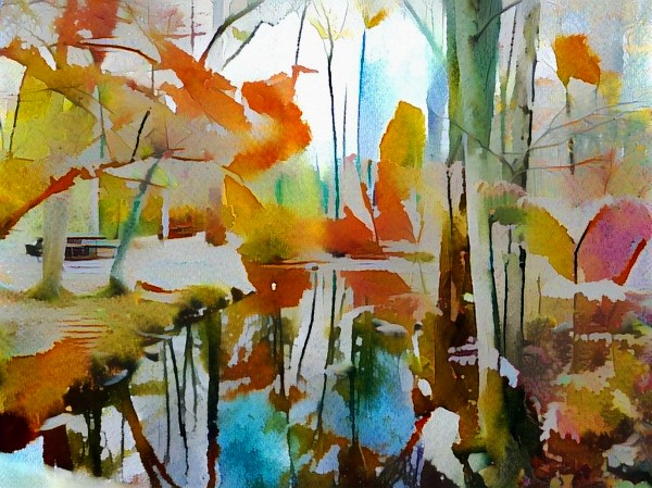 Autumn Forest by Bruce Rolff