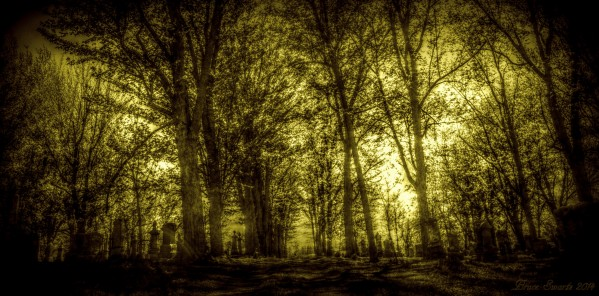 Spooky Cemetery by Bruce Swartz