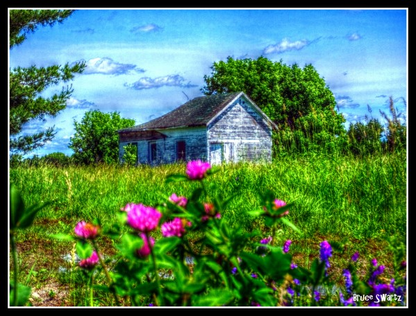 Abandoned Farm House & Floral by Bruce Swartz