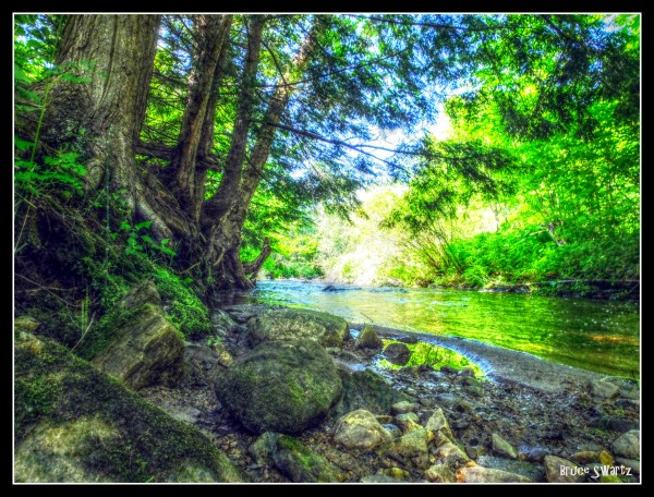 Nature Riverside HDR by Bruce Swartz