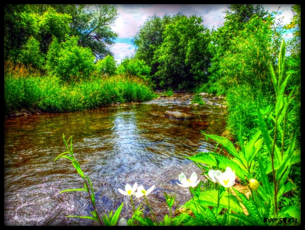 Beautiful Waterside & Floral in HDR by Bruce Swartz