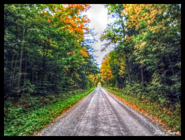 The Gravel Road by Bruce Swartz