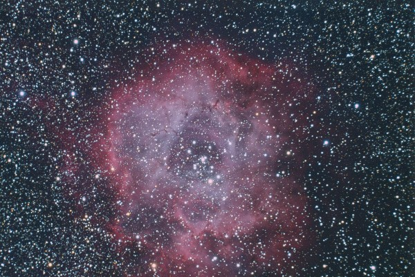 C50 Rosette Nebula by Bryan Bourn