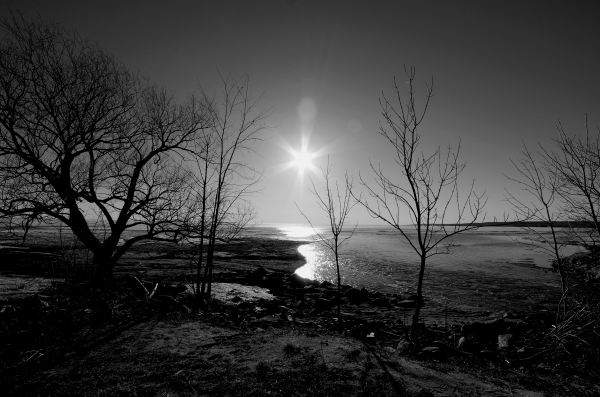 Lake Nipissing Black and White by Bunnoffee Photography