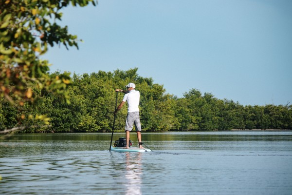 Paddleboarder by By the C Media
