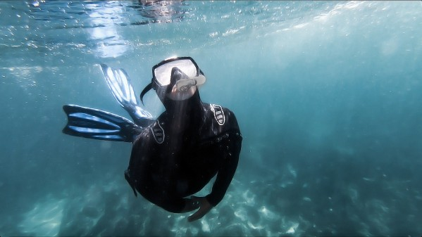 freediver by By the C Media