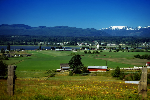 Comox Valley Thirty Years Ago Digital Download