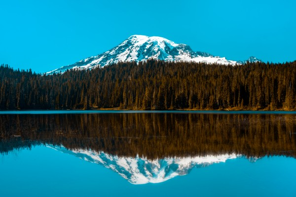 Reflecting Ranier by Cameron Grey