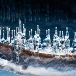 Vikings by Carole Ledoux Photography