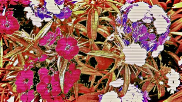HappymothersDay Canvas Print