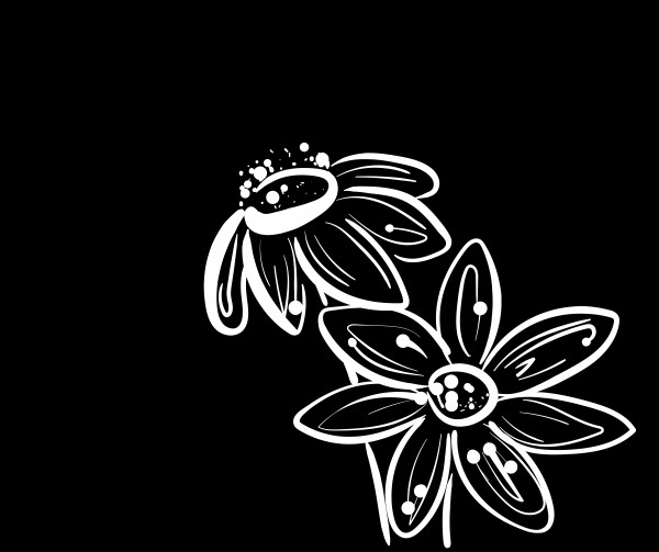 summer flower -black&white by Chino20
