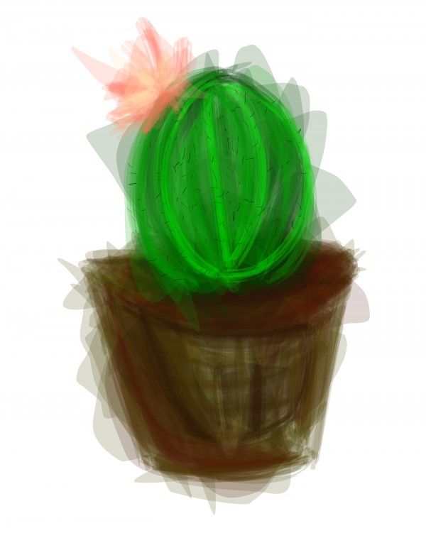 little cacti by Chino20