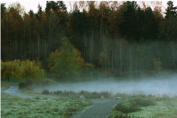 Weyerhaeuser morning by Chris Kadin