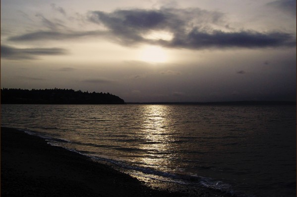 Puget Sound beach view by Chris Kadin
