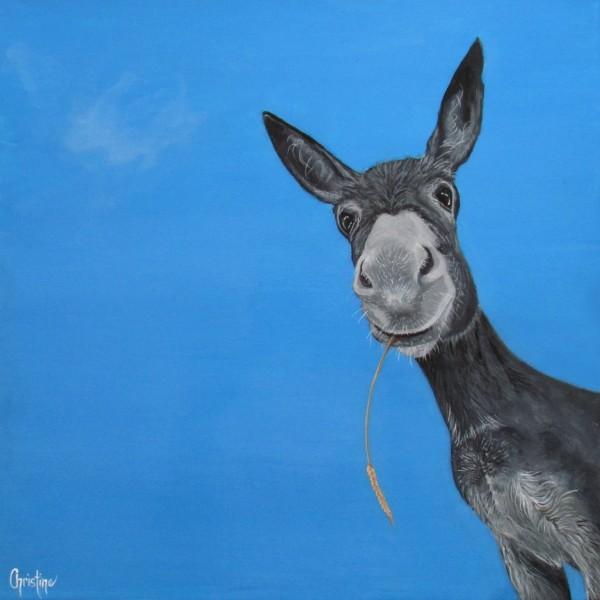 Dusty  by Christine Cholowsky