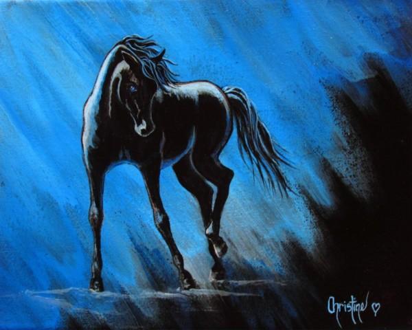 Midnight Blue  by Christine Cholowsky