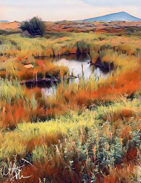 Fall Marsh  by Clint Hubler