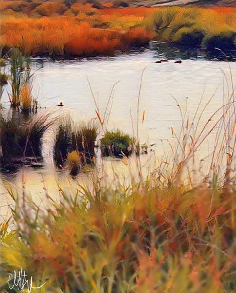 Fall Marsh 2 by Clint Hubler
