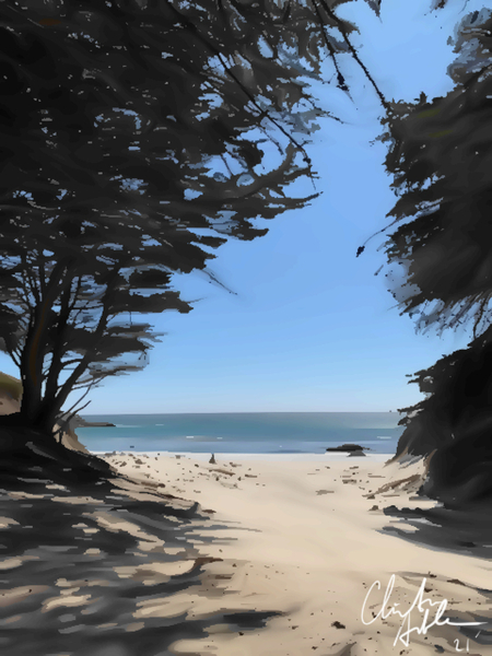 Peaceful Beach Digital Download