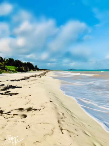Beach Walk by Clint Hubler