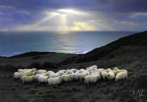 Sheep grazing Digital Download