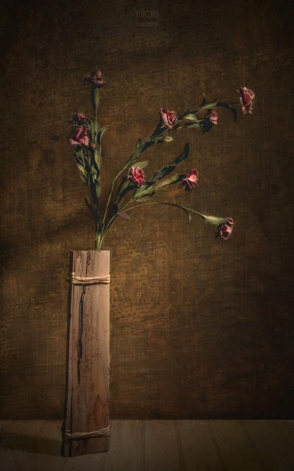 Etude Zen 7a by Daniel Thibault artiste-photographe