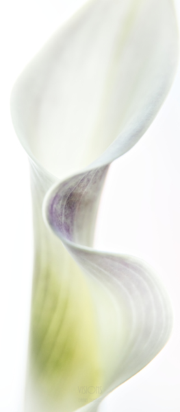 Aurore boreale 1 by Daniel Thibault artiste-photographe