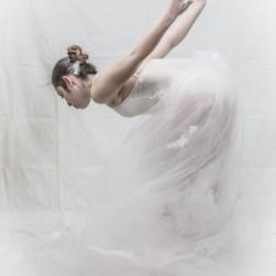 Le cygne 1 by Daniel Thibault artiste-photographe