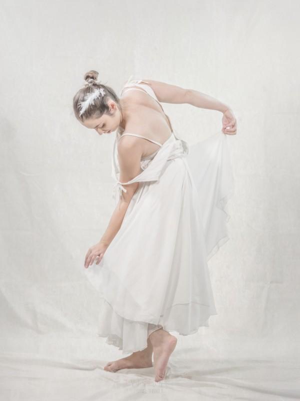 Le cygne 6 by Daniel Thibault artiste-photographe