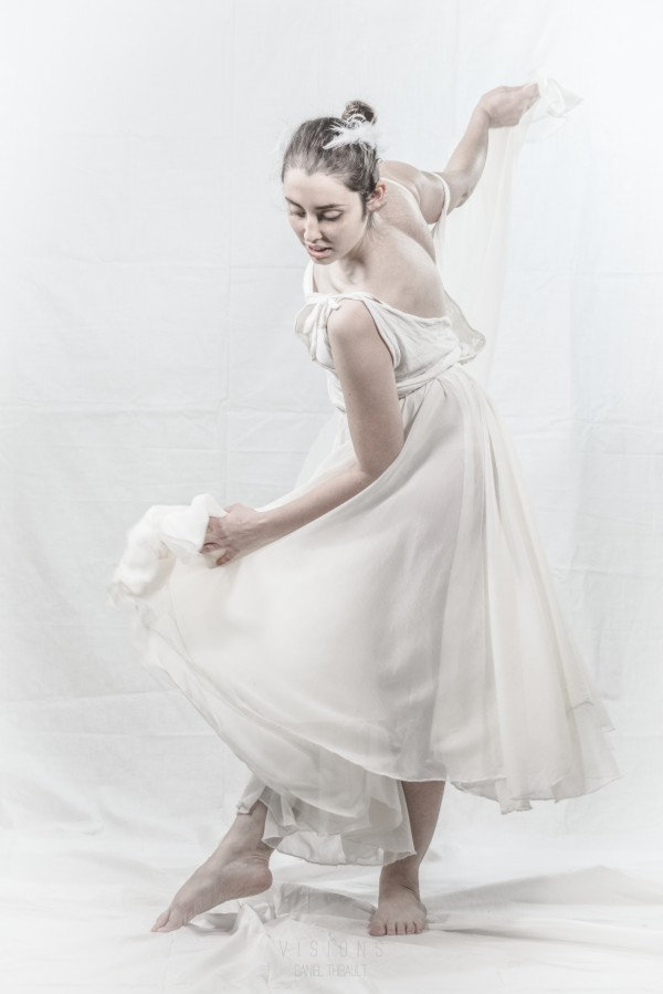Le cygne 5 by Daniel Thibault artiste-photographe