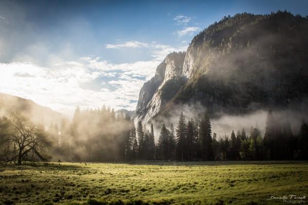 Yosemite Valley Mist by Danielle Farrell
