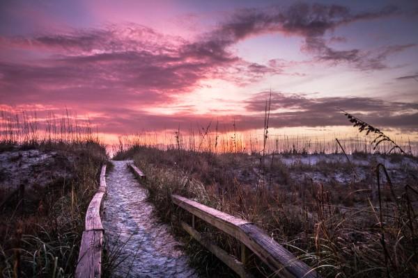 Sunrise Walkway by Danielle Farrell