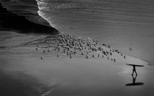 Morning Surf by Dave Burwell
