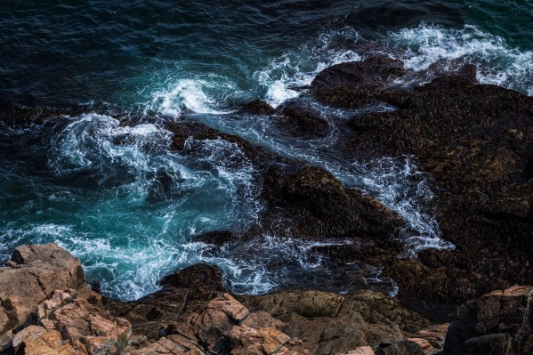 Coastal Currents by Dave Burwell