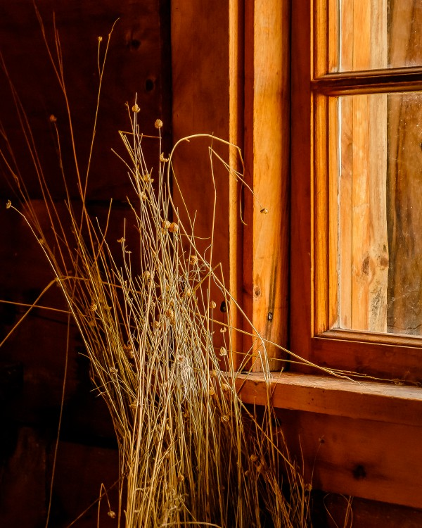 Straw Drying by the WIndow by Dave Therrien